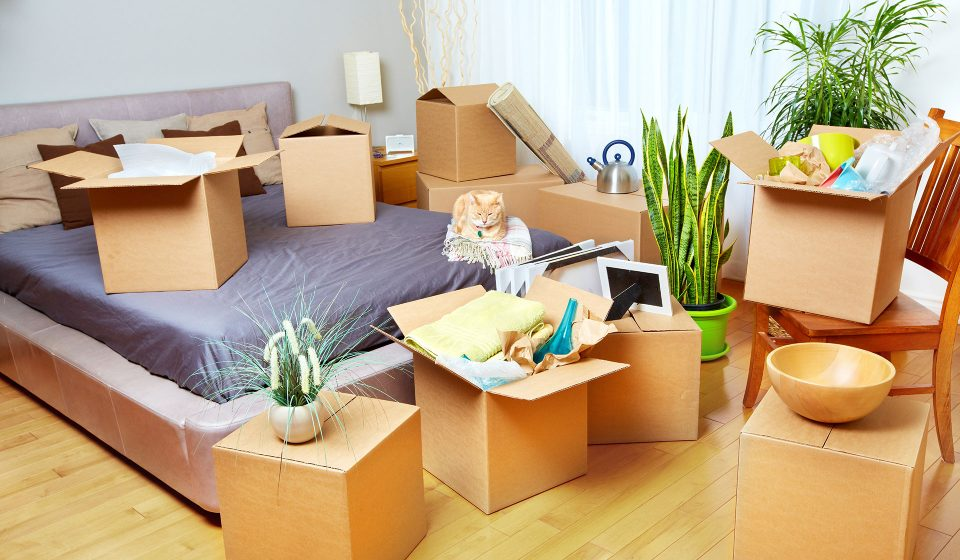 Parcel delivery to London from Manchester from £40